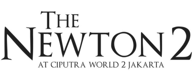 The Newton 2