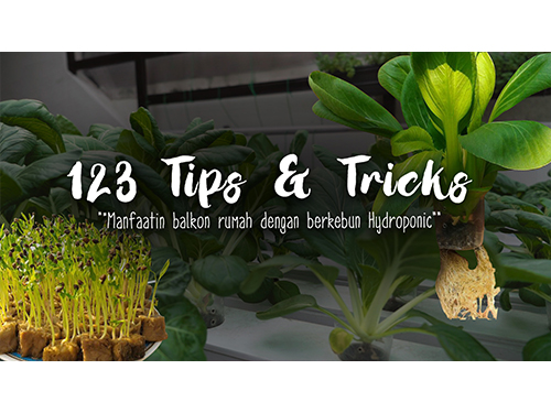 123 Tips - Hydroponic